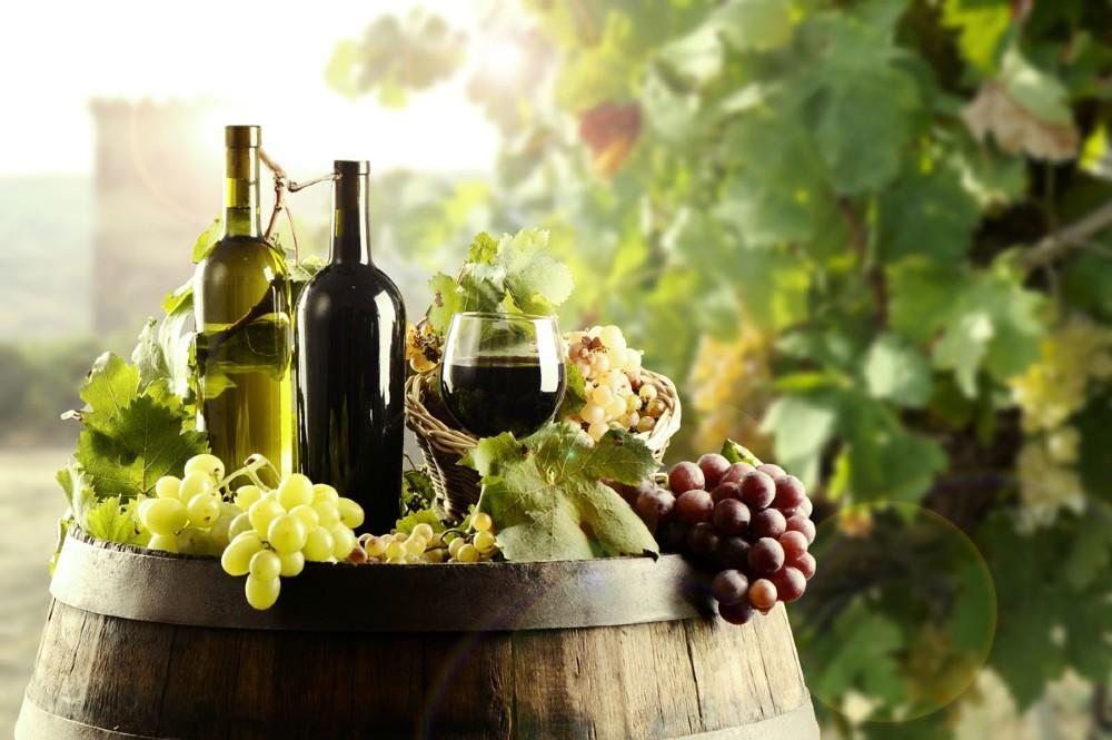 Vinho Orgânico e Biodinâmico