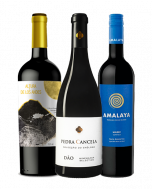 Kit 3 Vinhos Super Pontuados