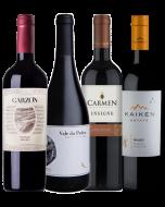 Kit 4 Vinhos Queridinhos do Novo Mundo
