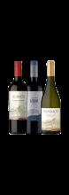 Kit 3 Vinhos Argentinos Campeões de Vendas
