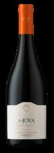 Garrafa de Vinho La Joya Gran Reserva Pinot Noir 2017