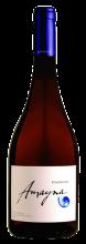 Garrafa de Vinho Amayna Chardonnay 2018