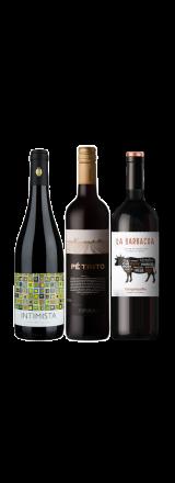 Kit 3 Vinhos Tintos Bons e Baratos