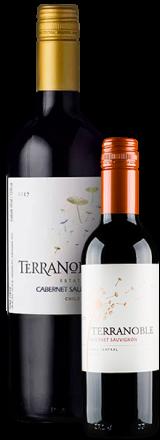 Garrafa de Vinho Tinto Terranoble Cabernet Sauvignon Estate 2018